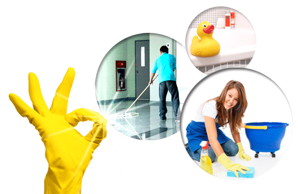 A1 Home Deep Cleaning Services